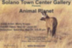 Animal Planet - Front.jpg