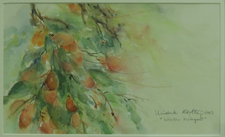 Winter Kumquats