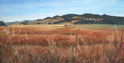 green-valley-meadows-low-res.jpg