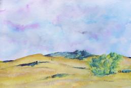 Il Fiorello view - Barbara Smithson.jpg