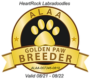 HeartRock GOLDEN PAW 2021.png