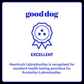 HeartRock Good Dog Badge.jpeg