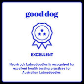 HeartRock Good Dog Badge.jpeg