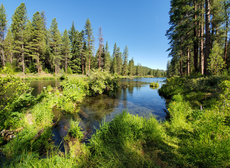 Metolius River - Camping, Hiking & Relaxing