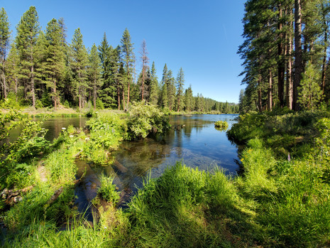 Metolius River - Camping, Hiking & Relaxing