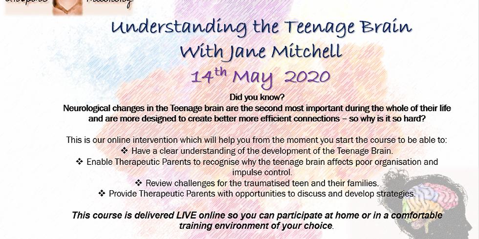 Understanding the Teenage Brain With Jane Mitchell Webinar