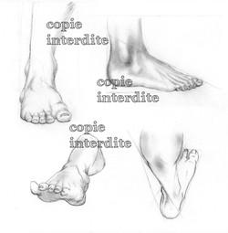 Etude pieds