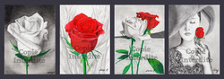 Roses message