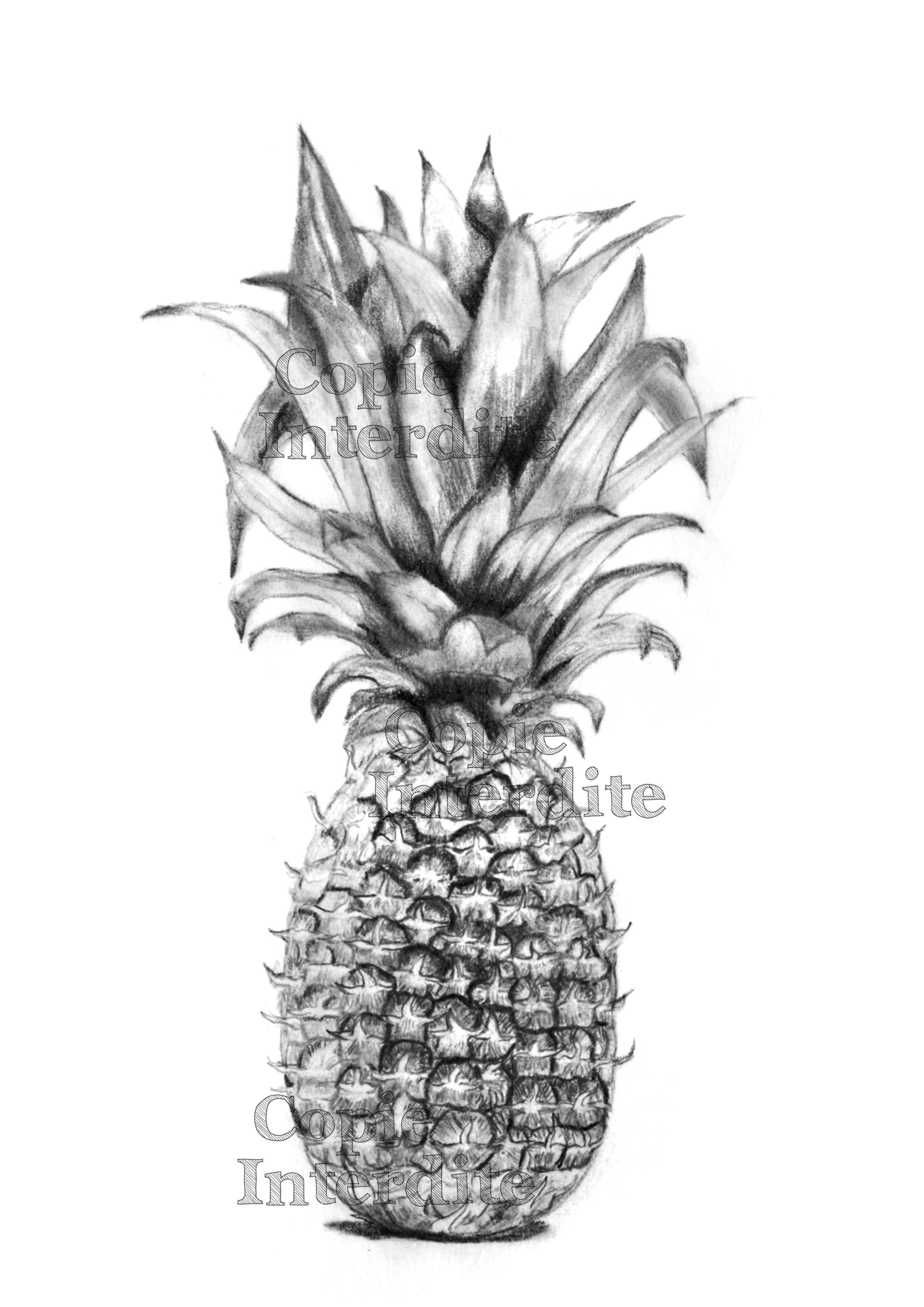 ananas (étude de texture)