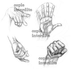 Etude mains