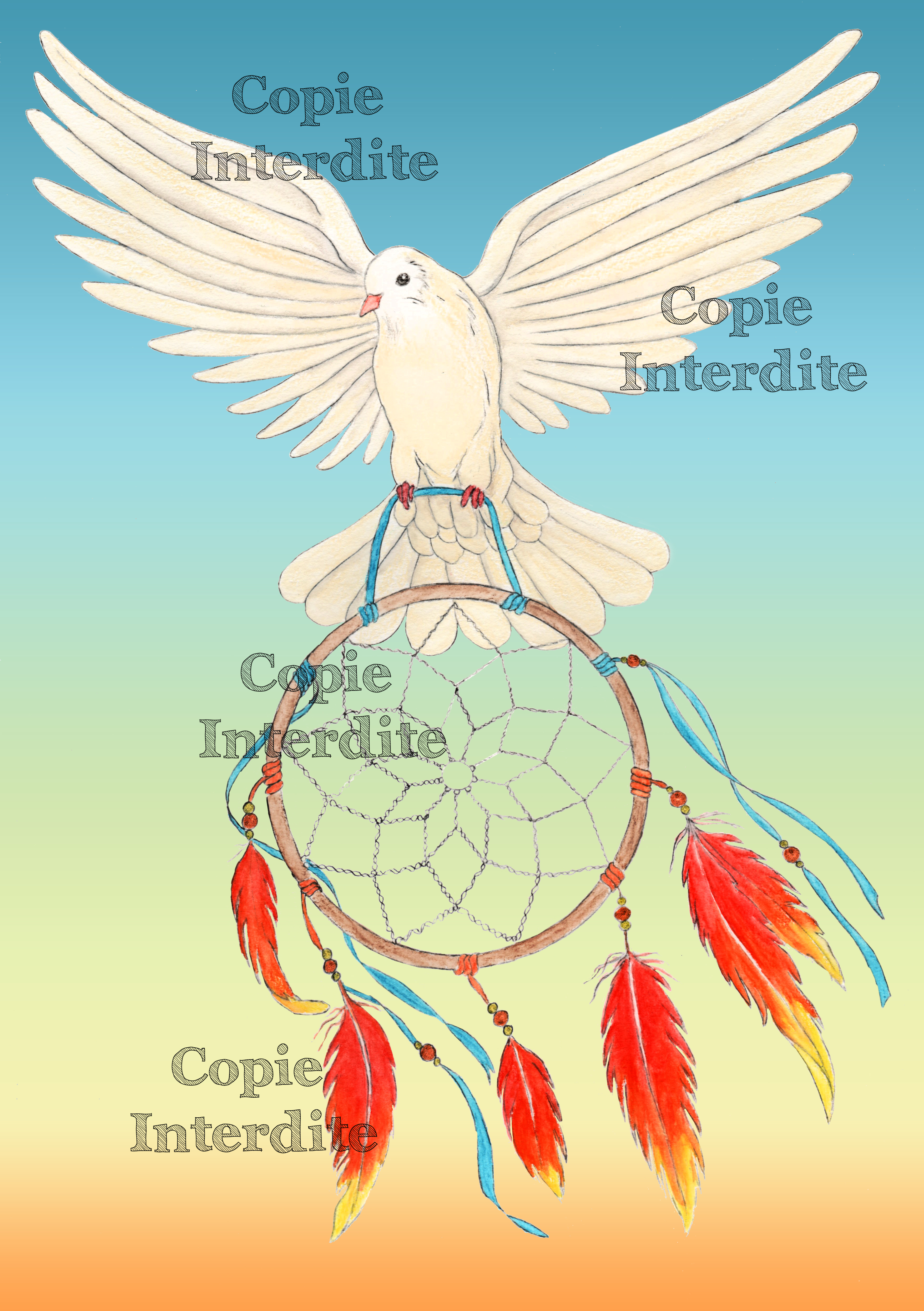 rêves et colombe