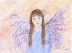 ange demoiselle