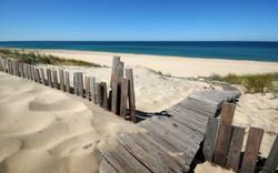Photo plage et océan