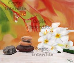 Zen et couleurs
