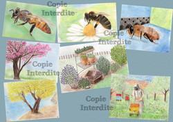 Nature et abeilles