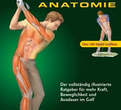7 einfach umzusetzende Golf Fitnessübungen zur Verbesserung von Rückschwung, Abschwung und Durchschw