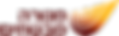 לוגו- מנורה (002).png