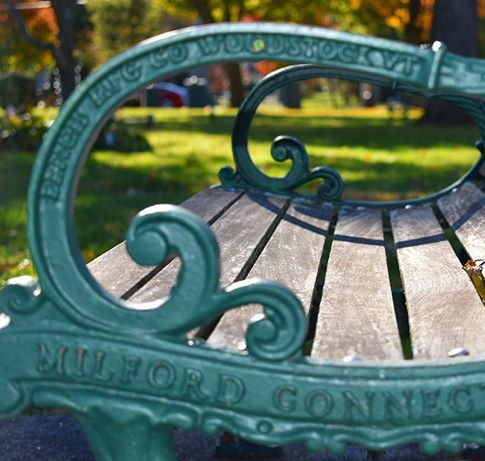 Bench on the Green