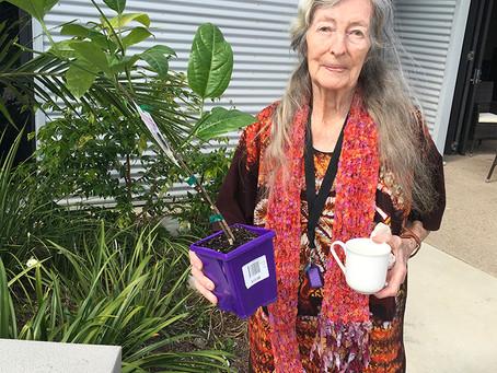 Bunnings help develop a sensory garden!