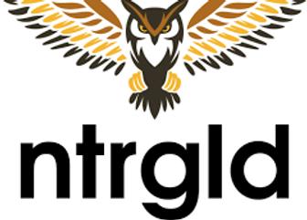 netergold logo.png