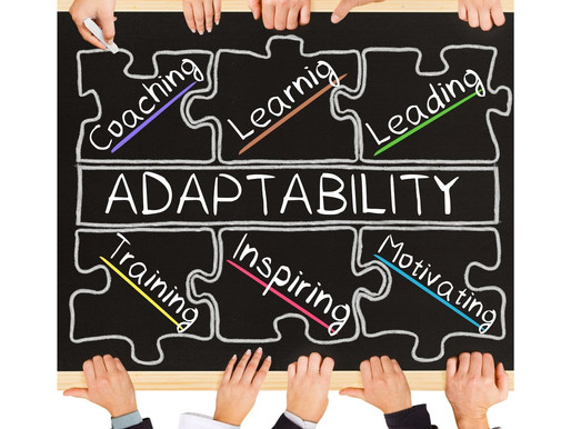 DUAL SIGNS AND ADAPTABILITY