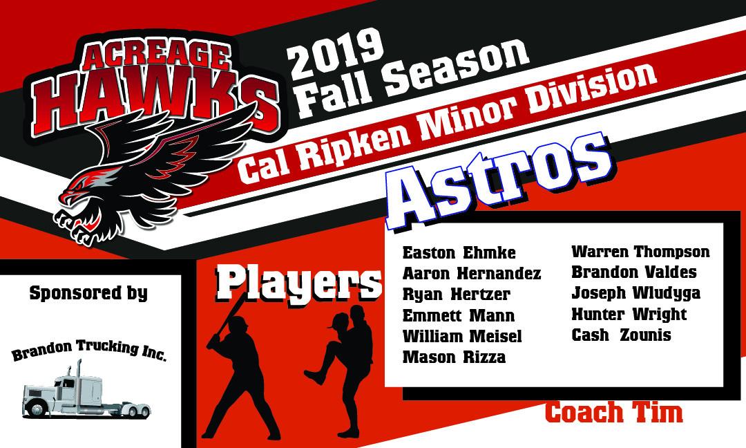 minor Astros.jpg