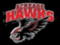 hawks-logo,jpg.png