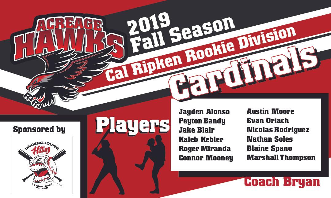 rookie cardinals.jpg