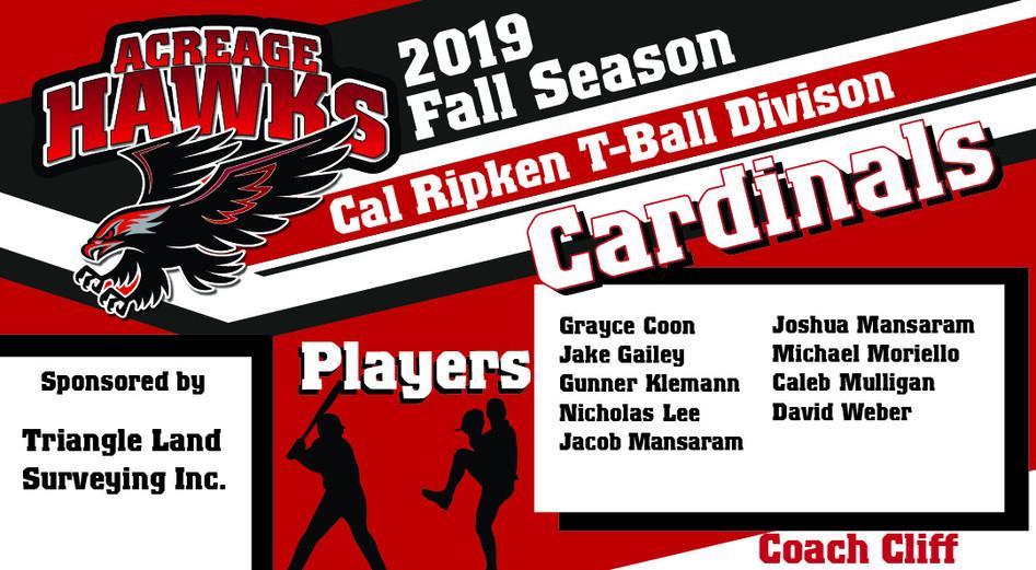tball Cardinals.jpg