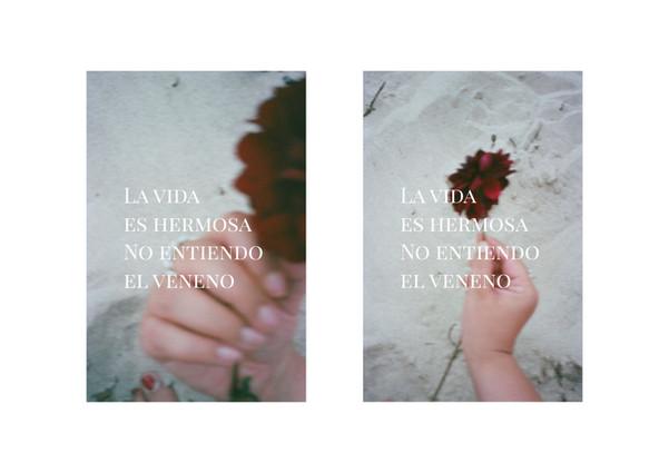 Pareja7.jpg