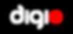 Digioo Digital Advertising Agency