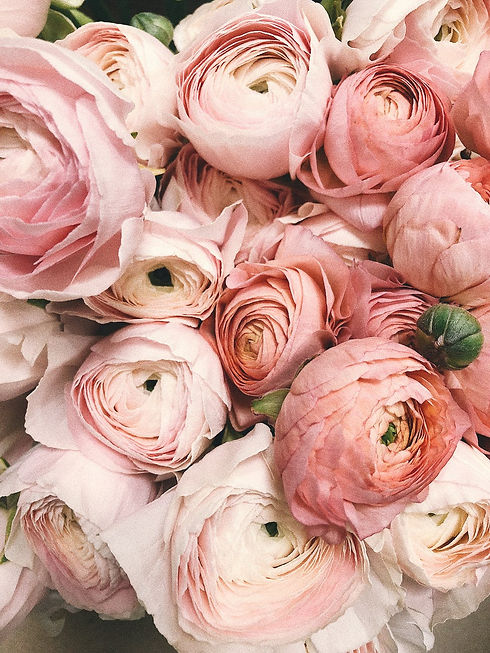 HLA_Roses.jpeg
