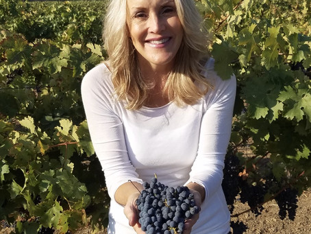Redmon Wines 20th harvest in the Napa Valley is officially complete!