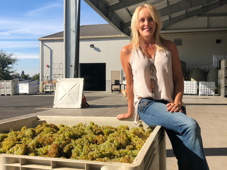 Our Chardonnay Grapes are In!!