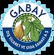 Gabay Figs Logo.png