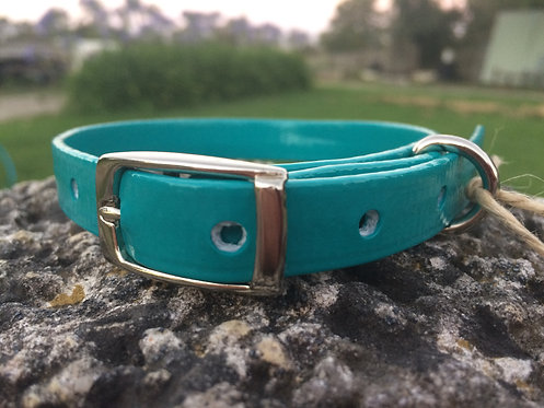 Dog Collar - Turquoise