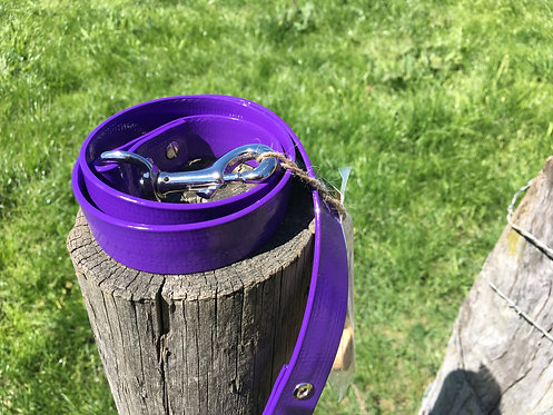 Dog Lead - Purple