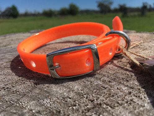 Dog Collar - Orange