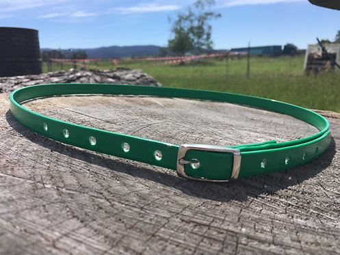 Horse ID Collar - Green