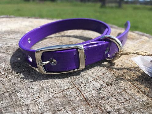 Dog Collar - Purple