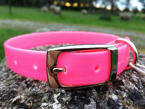 Dog Collar - Hot Pink