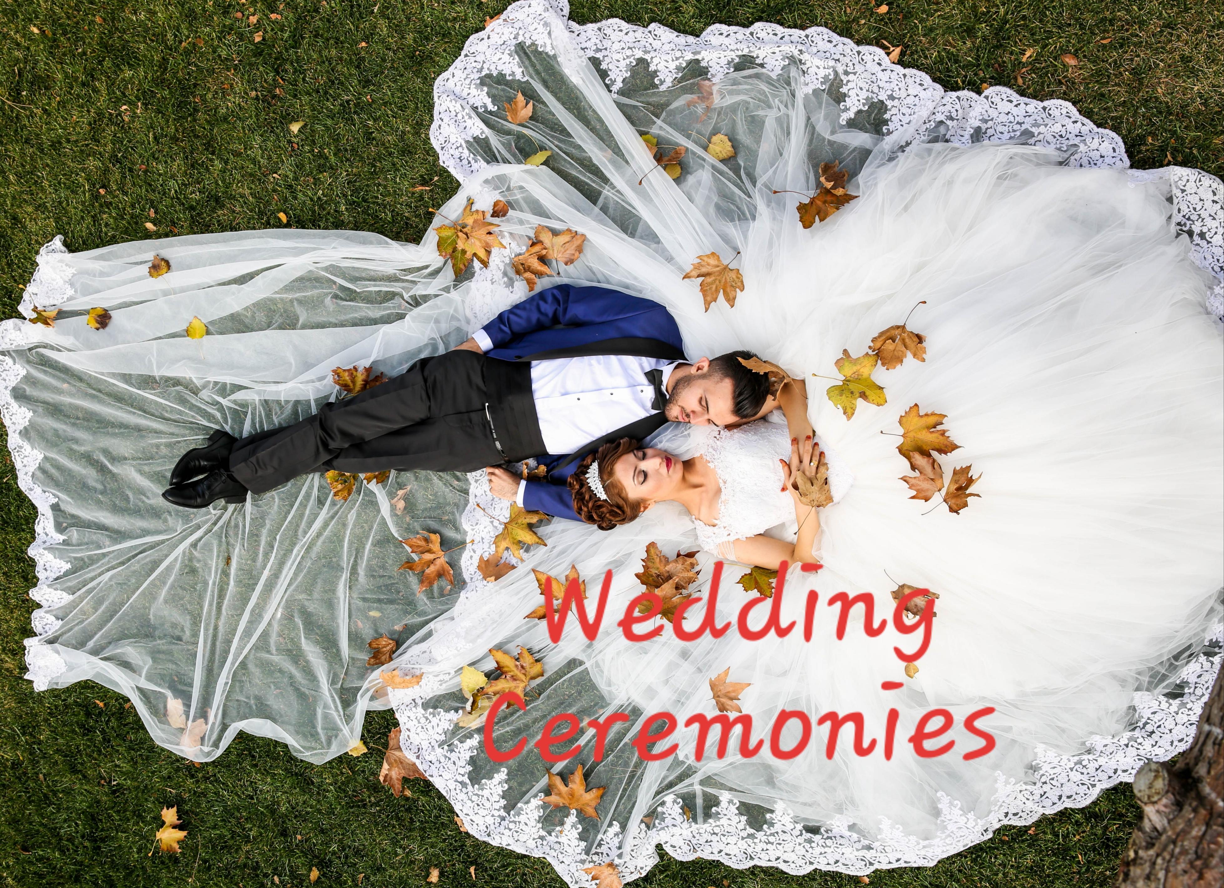 Aerial Wedding Shot