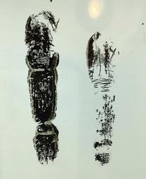 Ink Finger Prints