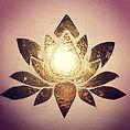 Lotus2_edited.jpg