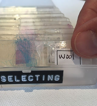 Selecting.jpg
