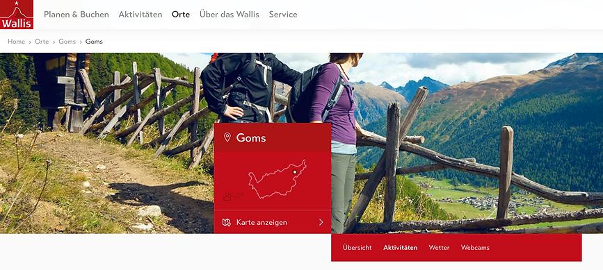 Wallis Tourismus_Obergoms Sommer.png
