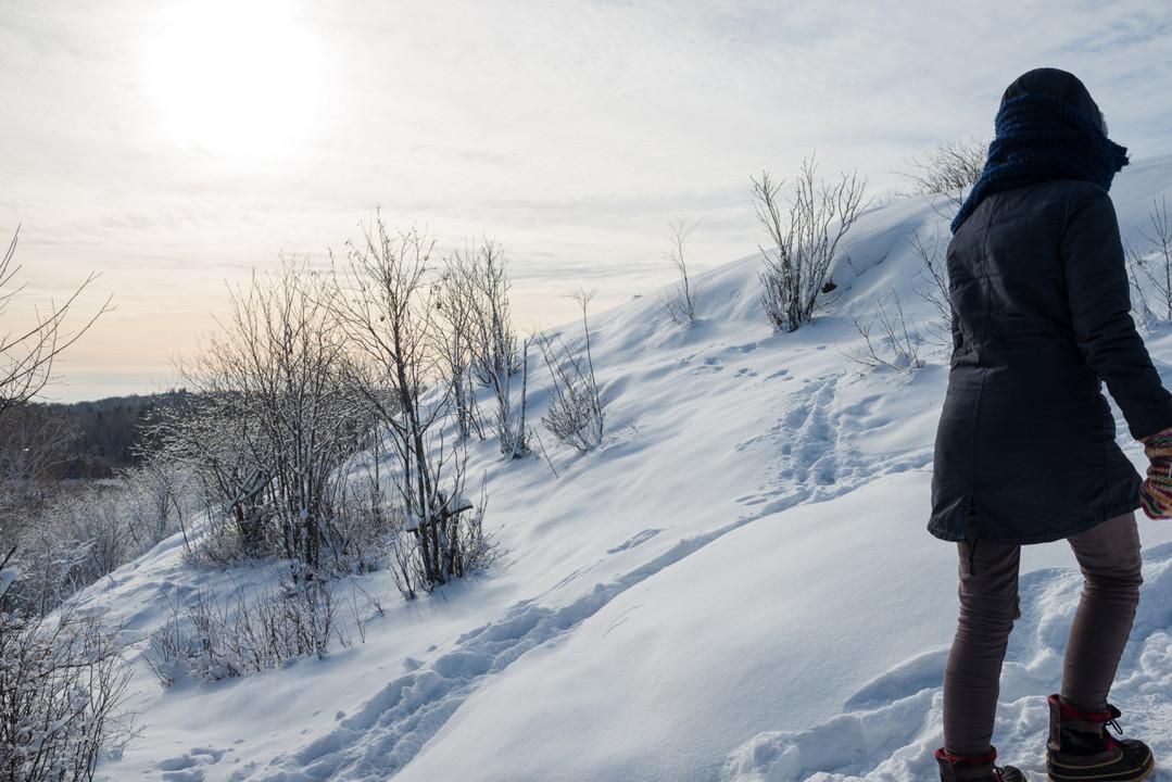 Rock Knob in Winter