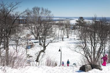 Sliding Down Snowy Enger Park