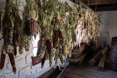Corn Drying at Fort Snelling