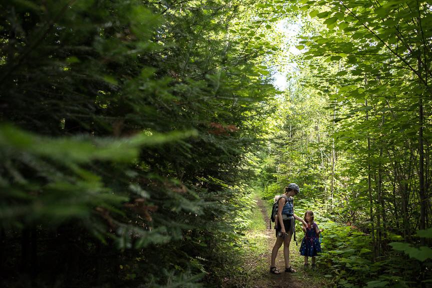 Hiking Near Loon Lake on the Gunflint Trail